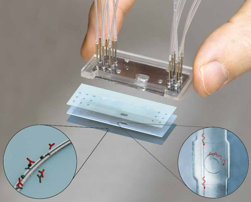 Lab-on-chip system for label-free diagnostics